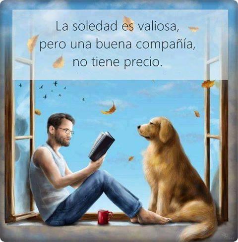 La soledad es valiosa pero una buena compañia no tiene precio