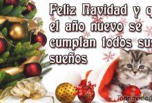 Felicitaciones de Navidad y Año nuevo 2017