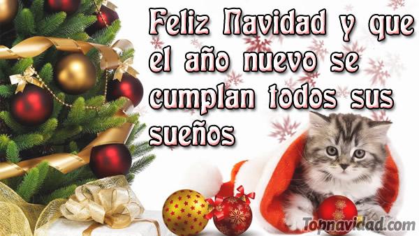 Felicitaciones Para Navidad 2019.Felicitaciones De Navidad Y Ano Nuevo 2019 Frases De
